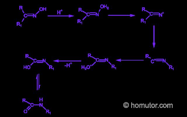 Beckmann-rearrangement-mechanism